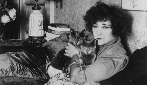 Did Colette the french famous writer loved cats?
